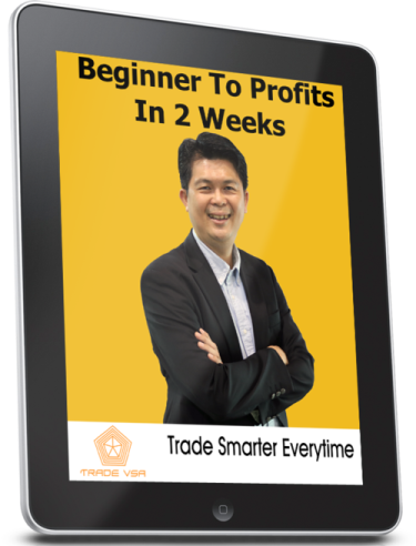 Beginner To Profits